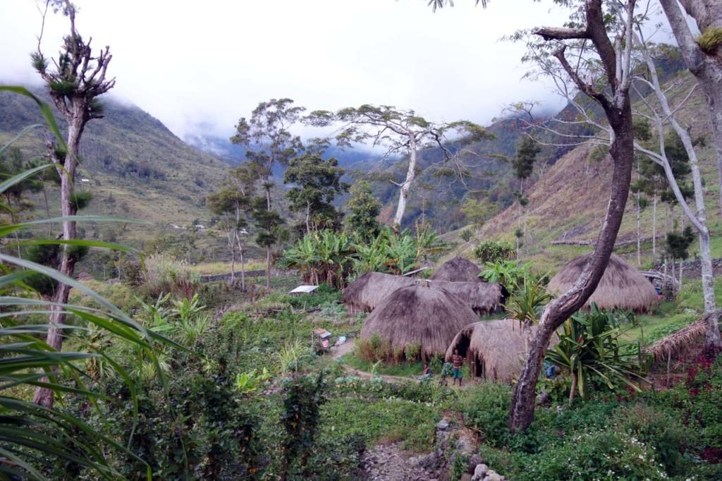 indonesien-papua-baliem-tal-sykosimo