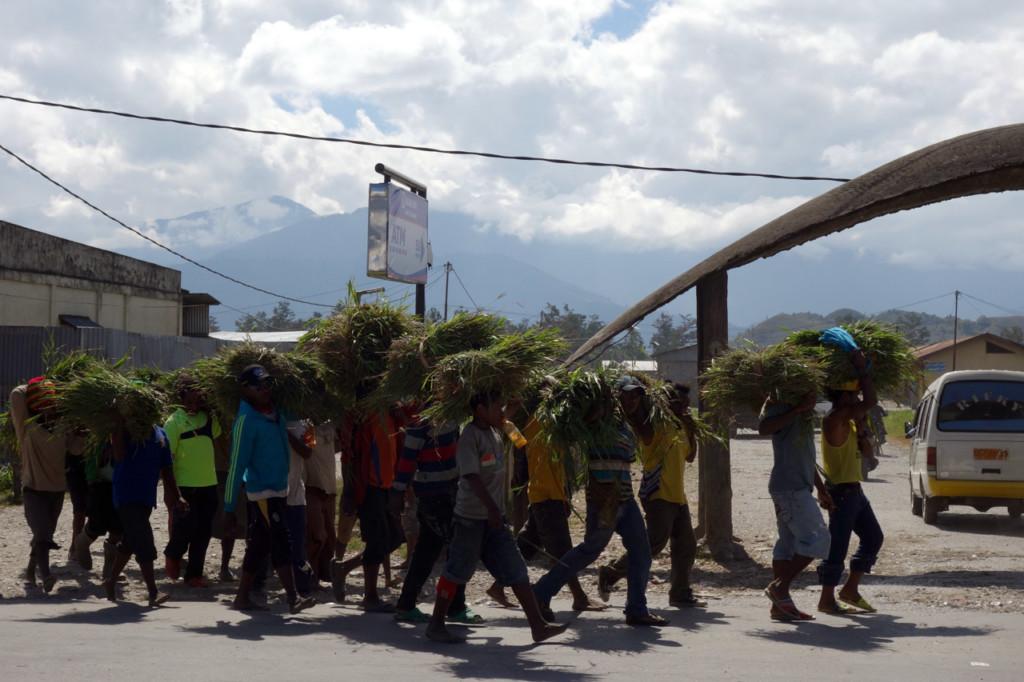 indonesien-papua-baliem-tal-wamena-markt