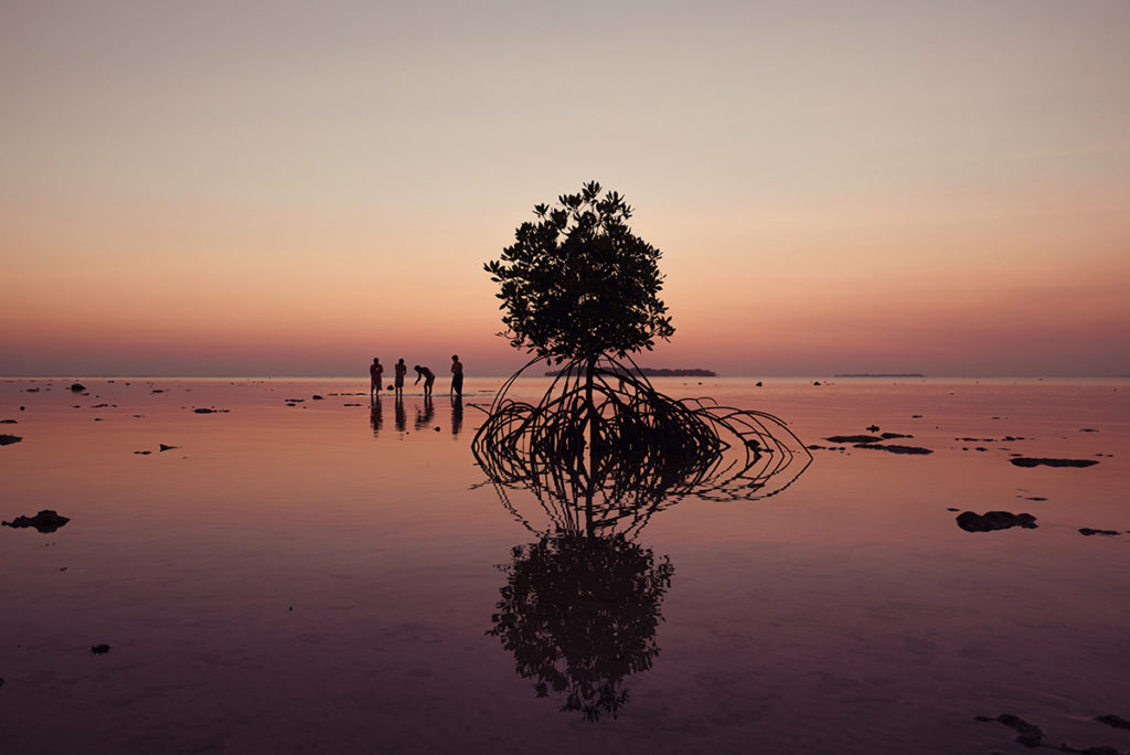 Karimunjawa-indonesien-java