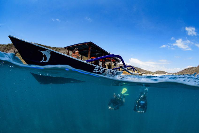 lombok-blue-marlin