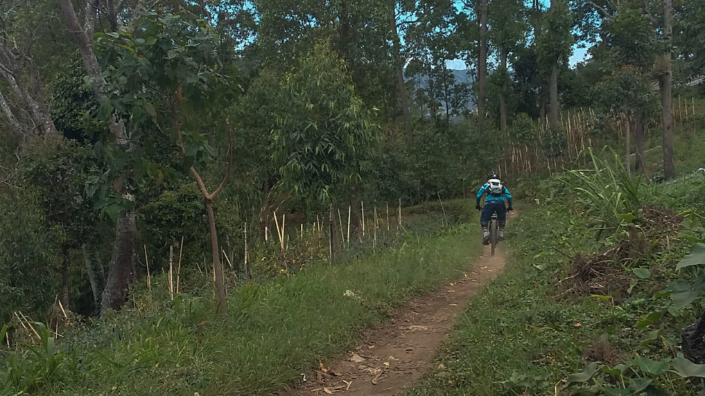 mountainbike-bali-3