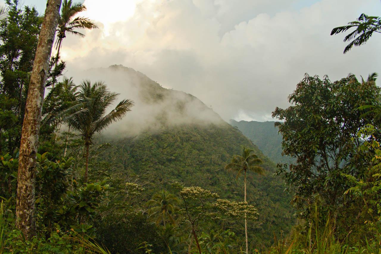 Bergwelt von Tagulandang