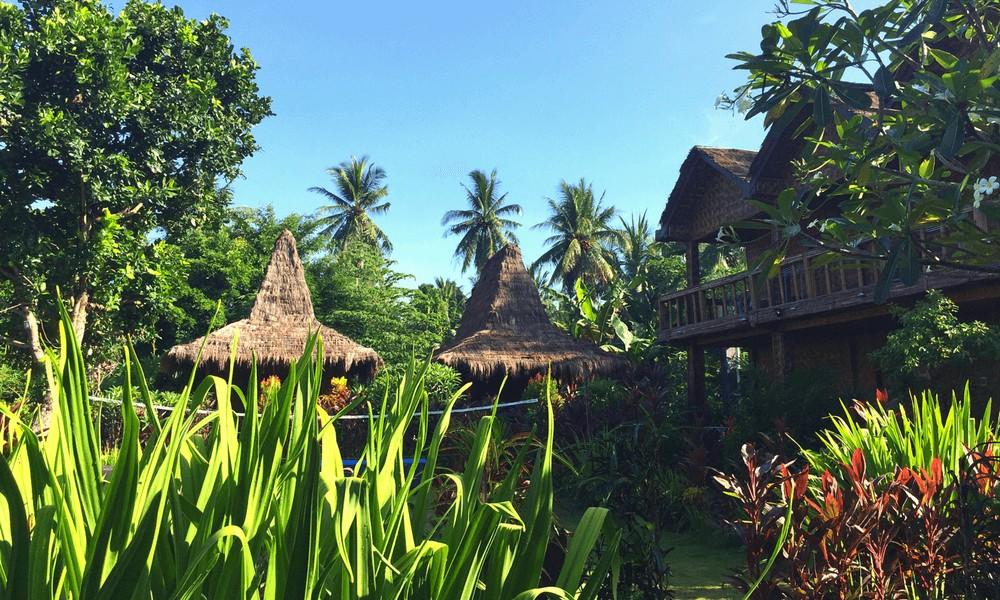 Ost-Java Reisetipps:Surfcamp Red Island