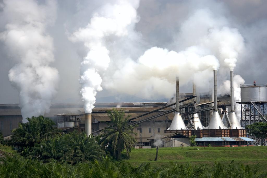 palmoel-fabrik-indonesien