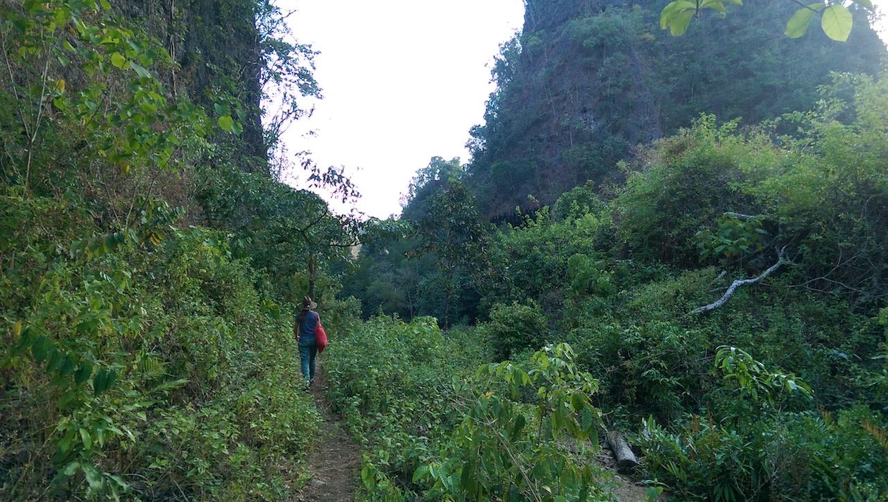 Trekking in Rammang Rammang