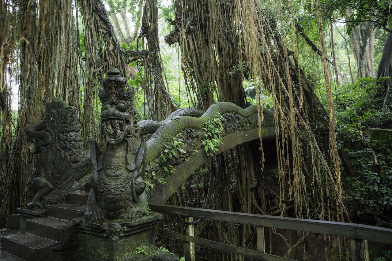 regenzeit-bali-natur