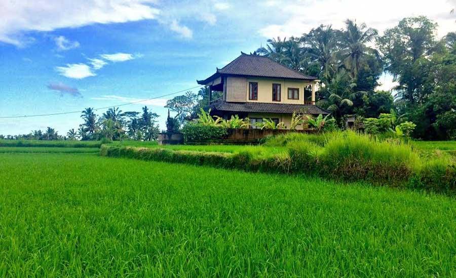 digitale-nomaden-Ubud-Bali-reisefroh