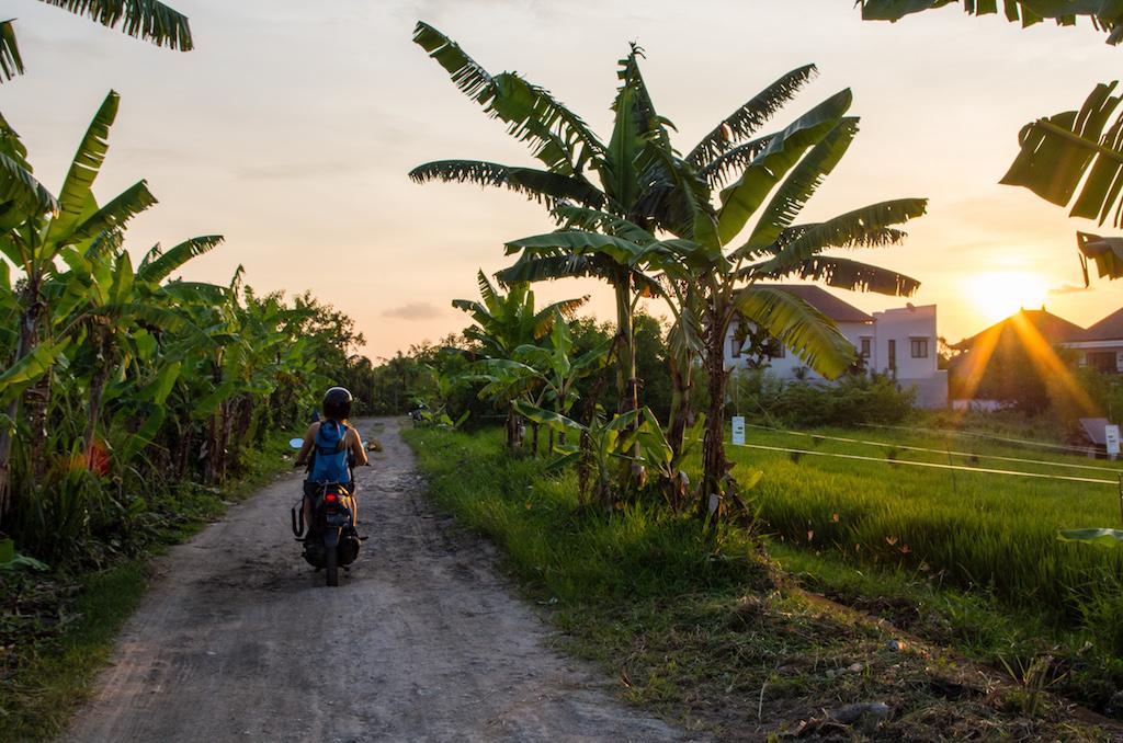 Wasserfester-Rucksack-Bali-Roller