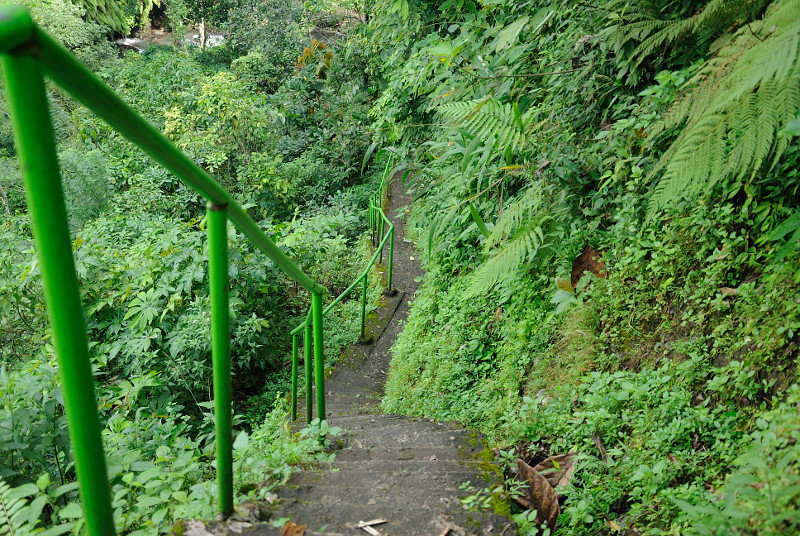 sekumpul-treppe