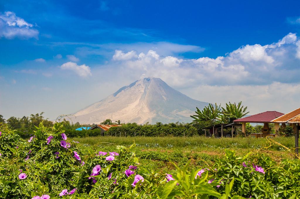 sinabung-vulkan-indonesien