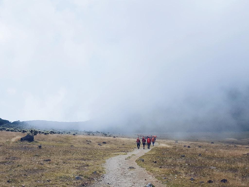 sukabumi-Gede-Pangrango-nationalpark