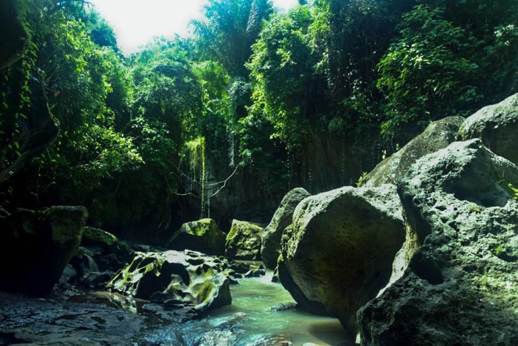 Sukawati Bali Hidden Canyon