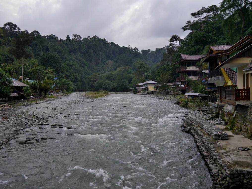 sumatra_bukit_lawang_01