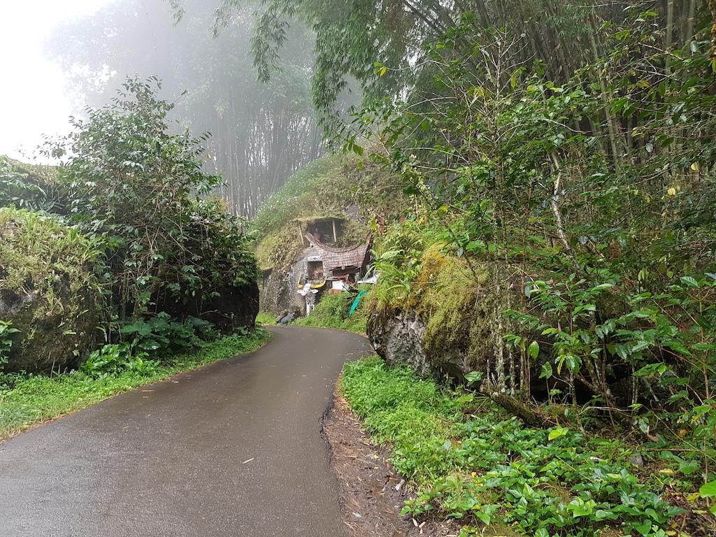 tana-toraja-mystische-landschaft-manene