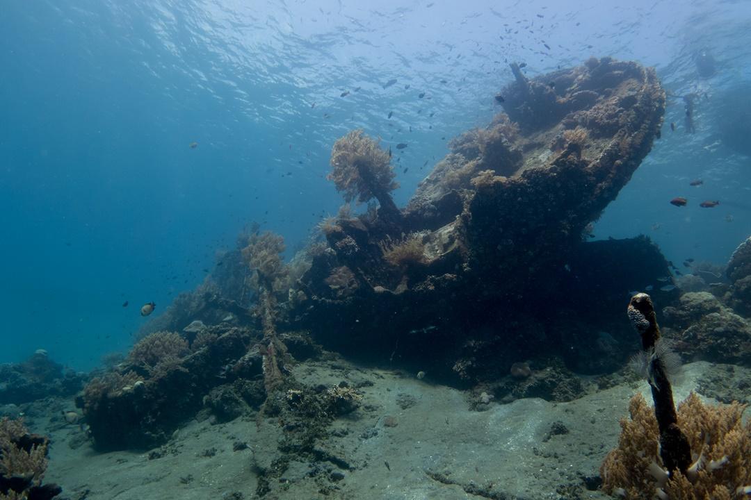tauchen indonesien amed japanese wreck