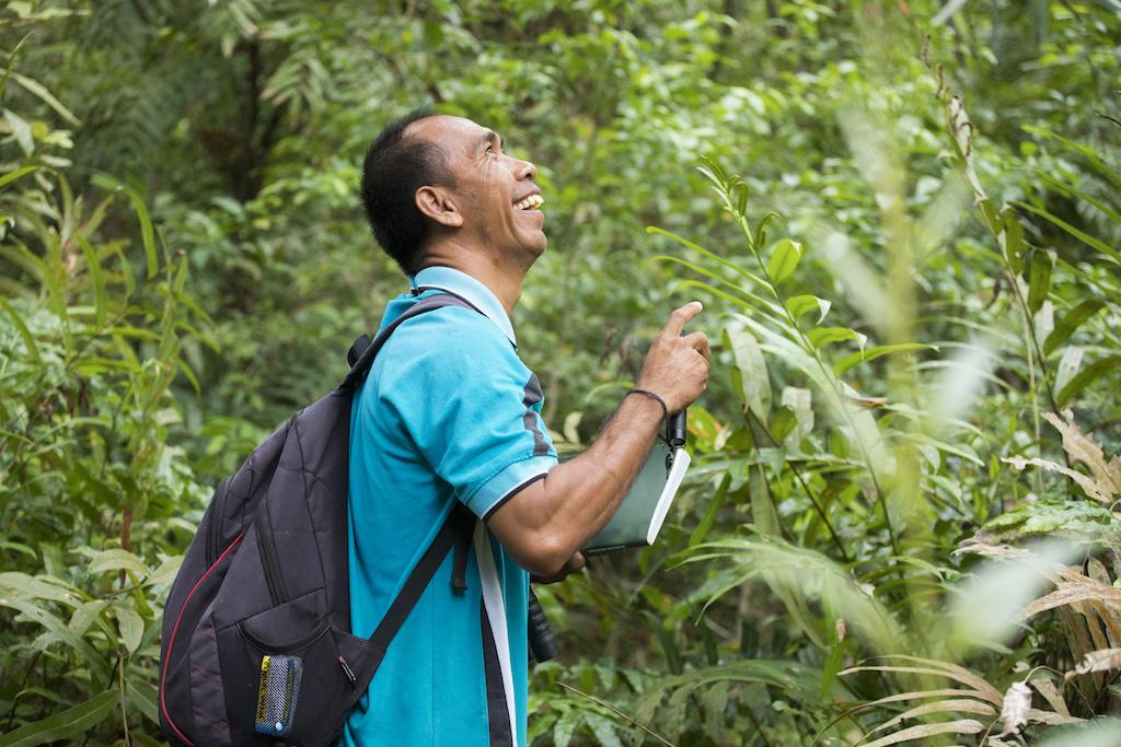 trekking-indonesien