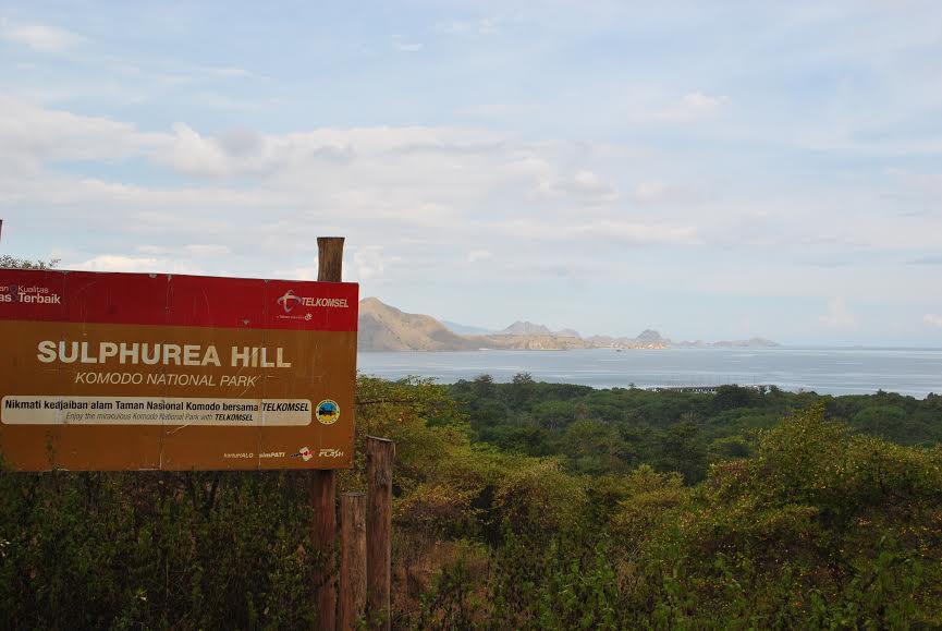 Sulphurea Hill im Komodo Nationalpark
