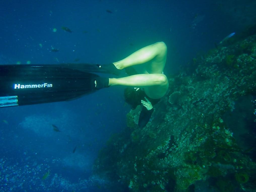 uss libety wreck freedive sara