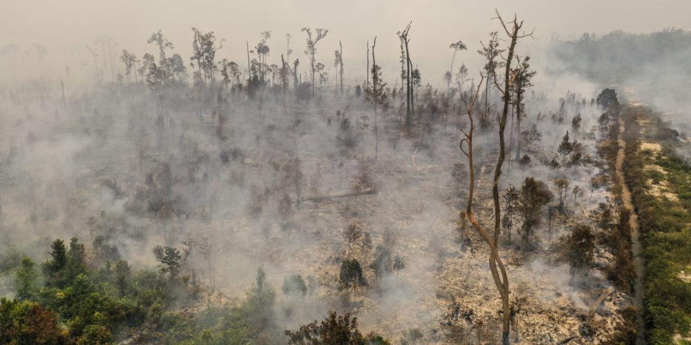 waldbrände-indonesien