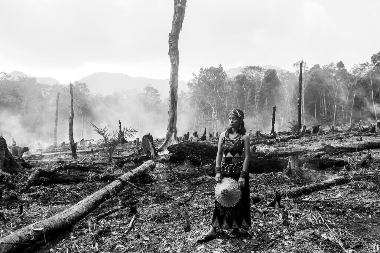 waldbraende-indonesien-titelbild-1