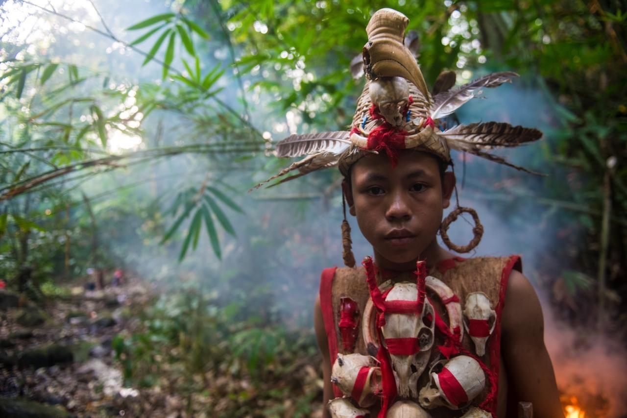 waldbraende-indonesien-titelbild-2